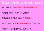 母の日ビジョン用 (002)